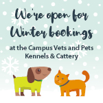 Kennels and Cattery (Leeds) Winter Bookings