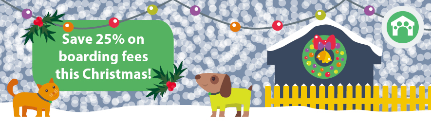 Save 25% on boarding fees this Christmas at Campus Vets and Pets!