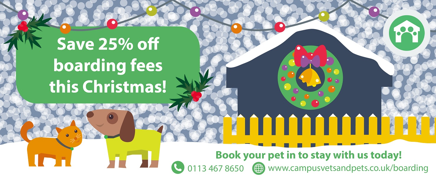 25% off kennel and cattery boarding fees this Christmas 2018