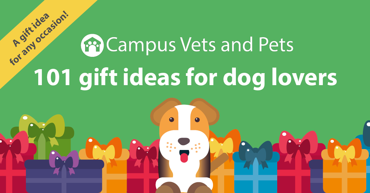 101 pawsome gift ideas for dog lovers & dog owners