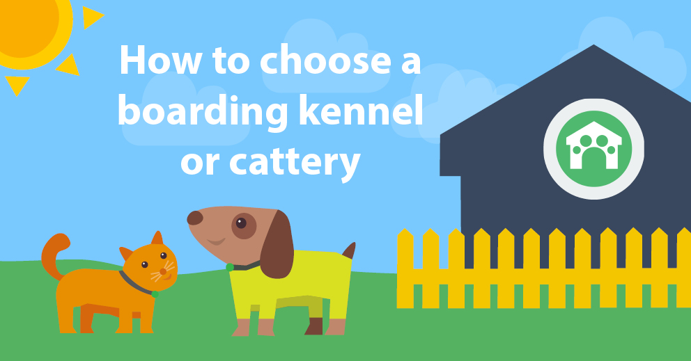 How to choose a boarding kennel or cattery: 9 questions to ask