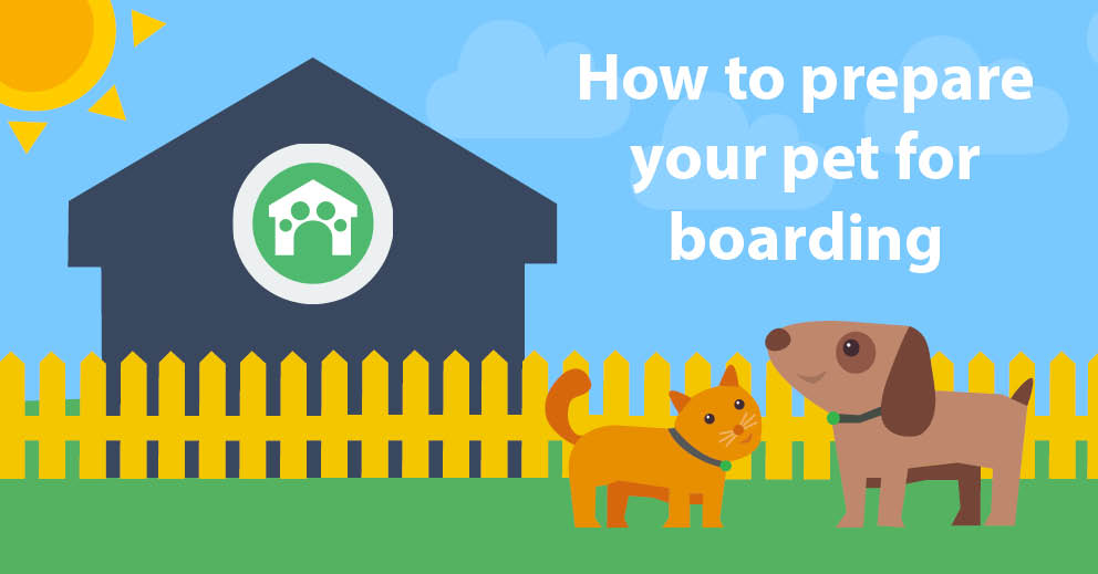 How to Prepare Your Pet for Boarding (Top Tips and Advice)