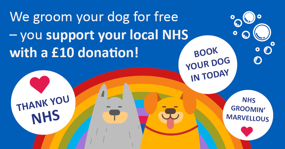 We groom your dog for free – you support your local NHS with a £10 donation!